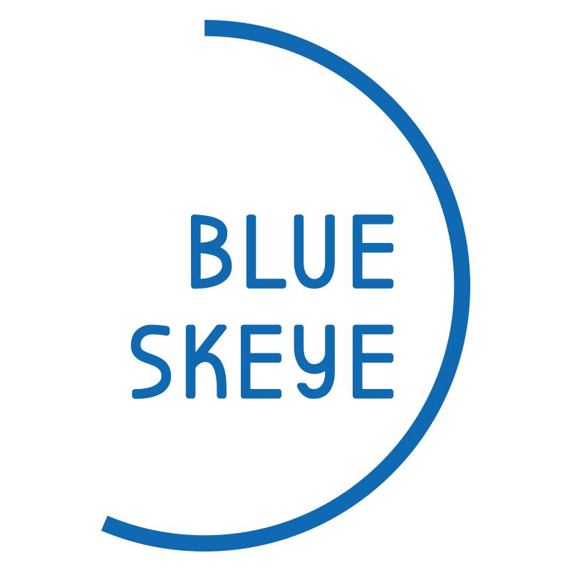 Blue Skeye logo